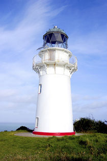 A lighthouse gives warning to ships approaching the eastern cape of New Zealand von Danita Delimont