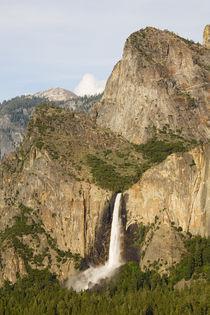 Bridalveil Falls by Danita Delimont