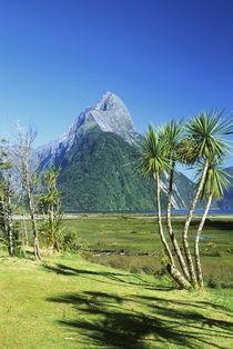Fiordland NP von Danita Delimont