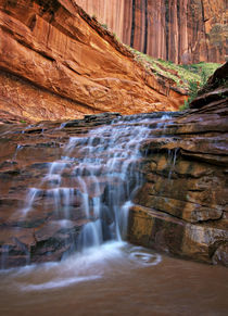 Waterfall in Coyote Gulch by Danita Delimont