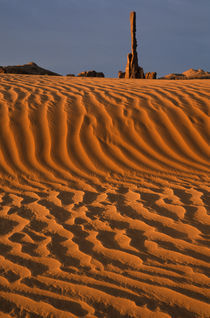 Sand dunes at Totem Pole by Danita Delimont