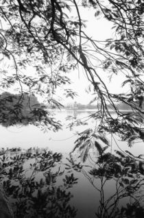 Hoan Kiem Lake View by Danita Delimont