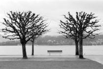 Lake Lucerne by Danita Delimont