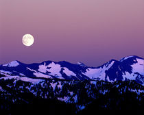 Moonrise from Hurricane Ridge in Olympic National Park von Danita Delimont