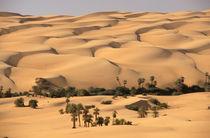 Ubari sand dunes by Danita Delimont