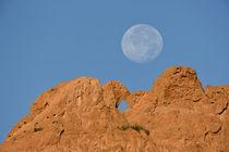 A full moon sets behind the Kissing Camels sandstone formation von Danita Delimont