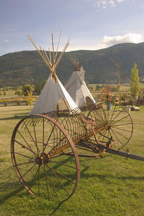 Tepees & Antique Farm Equipment by Danita Delimont