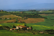 Scenic of the Val d'Orcia countryside in Tuscany by Danita Delimont