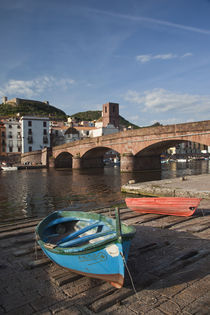 Town view along Temo River and Ponte Vecchio bridge by Danita Delimont