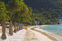 Island of Tortola British Virgin Islands by Danita Delimont