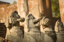 Singhat Wat Thammikarat von Danita Delimont
