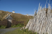 Replica of Viking longhouse with drying firewood by Danita Delimont