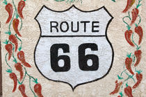Holbrook Route 66 street sign by Danita Delimont