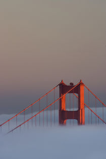 Pictured is the top of the Golden Gate Bridge's south tower sticking out of the fog at sunset by Danita Delimont