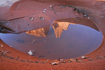 Rock formations reflected in rain puddle on Park Avenue Trail by Danita Delimont