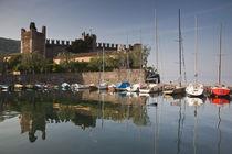 Il Castello Scaligero von Danita Delimont