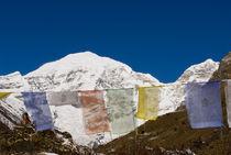 Bhutan by Danita Delimont