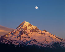 Sunset creates alpenglow on Mt Hood in the Oregon Cascades by Danita Delimont