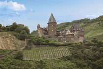 Schloss Stahleck and Vineyards above the Moselle River von Danita Delimont