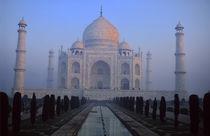 Taj Mahal by Danita Delimont
