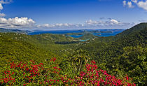 S Virgin Islands by Danita Delimont