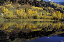 Telluride fall reflections in pond; early snow on mountains by Danita Delimont