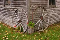 Wagon Wheels by Danita Delimont