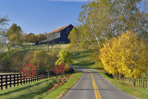 Kentucky by Danita Delimont