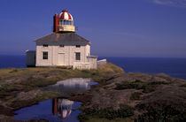 Old Cape Spear Lighthouse by Danita Delimont