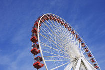 View of Ferris wheel ride at Navy Pier amusement park by Danita Delimont