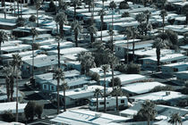 Trailer Park on East Palm Canyon Drive by Danita Delimont