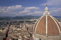 View of the Duomo's dome von Danita Delimont