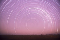 Star trails von Danita Delimont