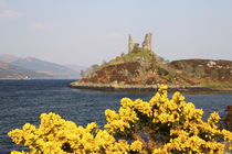 The ancient ruins of Kyleakin Castle or Castle Moil at the entrance to the Isle of Sky by Danita Delimont