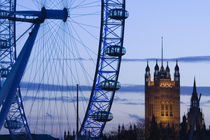 London: Houses of Parliament and London Eye / Evening von Danita Delimont
