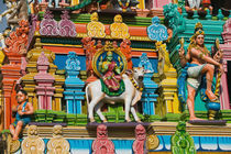Detail of Dravidian style temple by Danita Delimont