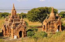 Various temples at Bagan by Danita Delimont