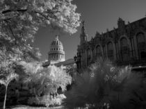 Infra red of Capitol building dome in Havana Habana Cuba by Danita Delimont