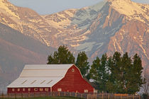 Bright red barn against Mission Mountains in Montana by Danita Delimont