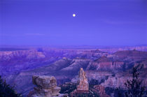 Moonrise over Point Imperial and the North Rim von Danita Delimont