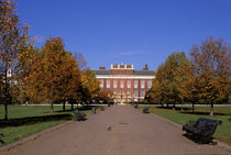 Kensington Palace in autumn by Danita Delimont