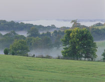 Rolling hills of the Bluegrass region at sunrise by Danita Delimont