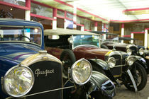 Peugeot Cars of the 1930's by Danita Delimont