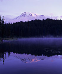 Rainier and it's reflection in Reflection Lake at dawn by Danita Delimont