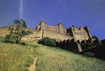 Languedoc Carcassonne by Danita Delimont