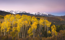 Dawn in the San Juan Mountains in fall by Danita Delimont