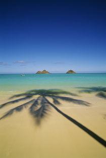 Lanikai Beach by Danita Delimont