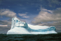 Iceberg by Danita Delimont