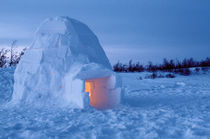Arctic igloo with candle light inside by Danita Delimont