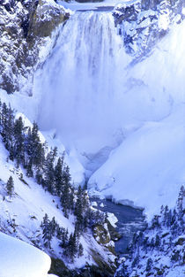 Winter scenic at Grand Canyon of the Yellowstone by Danita Delimont